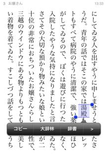 bREADER 1.3.2 で辞書引き